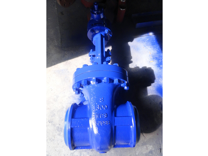 API 600 300#RF WC9 GATE VALVES
