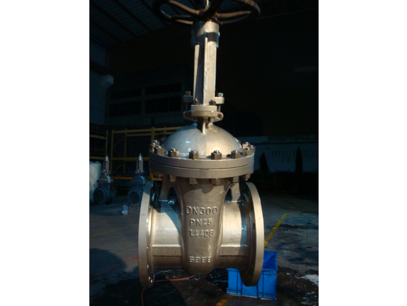 PN25 DN300 1.4408 DIN GATE VALVES