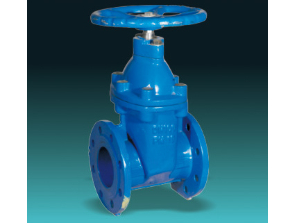 BS5163 Type B DI Resilient seat gate valves