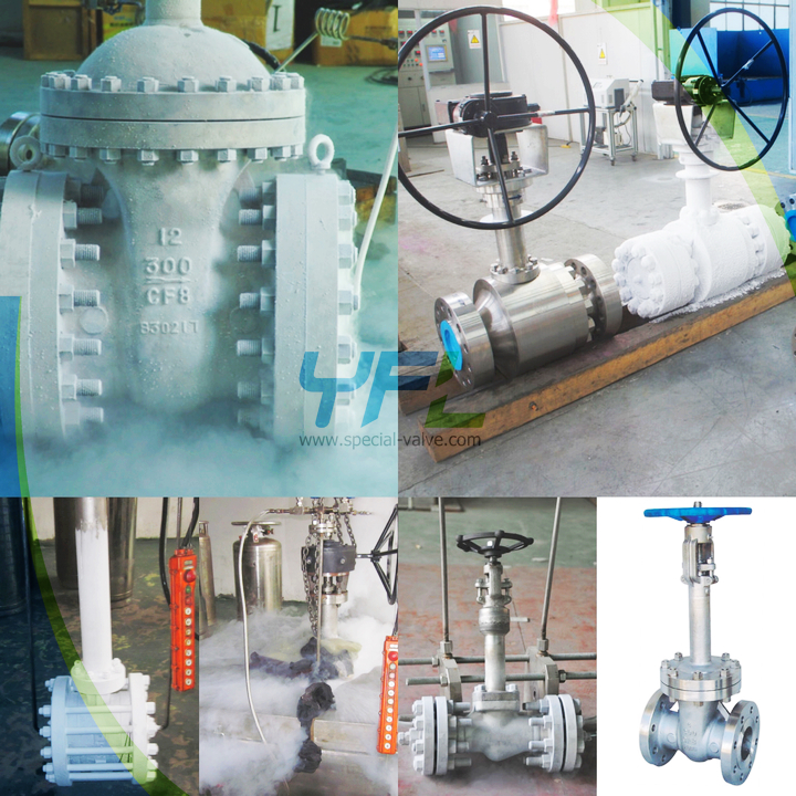 LNG cryogenic valves