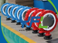Polished CF8 Disc PTFE Lined butterfly valve