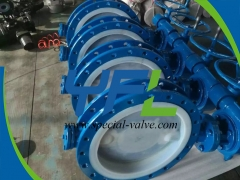 Short Flanged FEP Lined butterfly valve